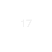 17 years industry experience